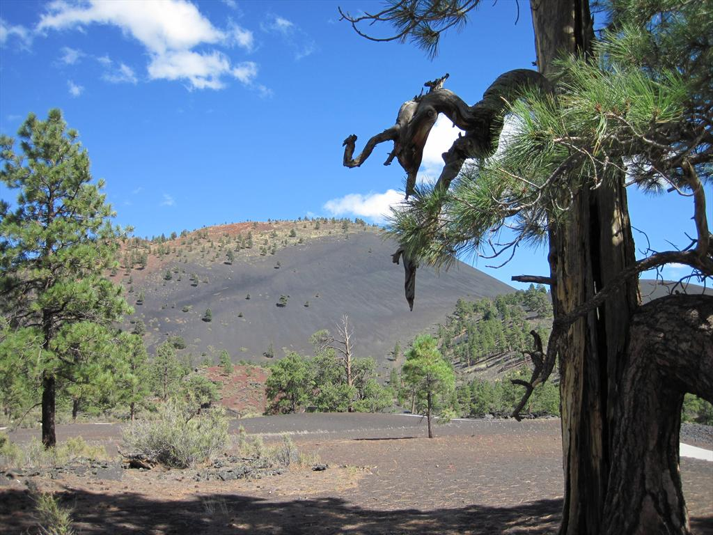 006-Lava Flow Trail view, Sunset Crater.JPG